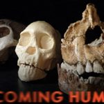 NOVA Becoming Human